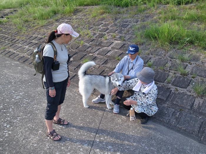 ニコ2歩散歩 (^o^)_c0049299_21533351.jpg