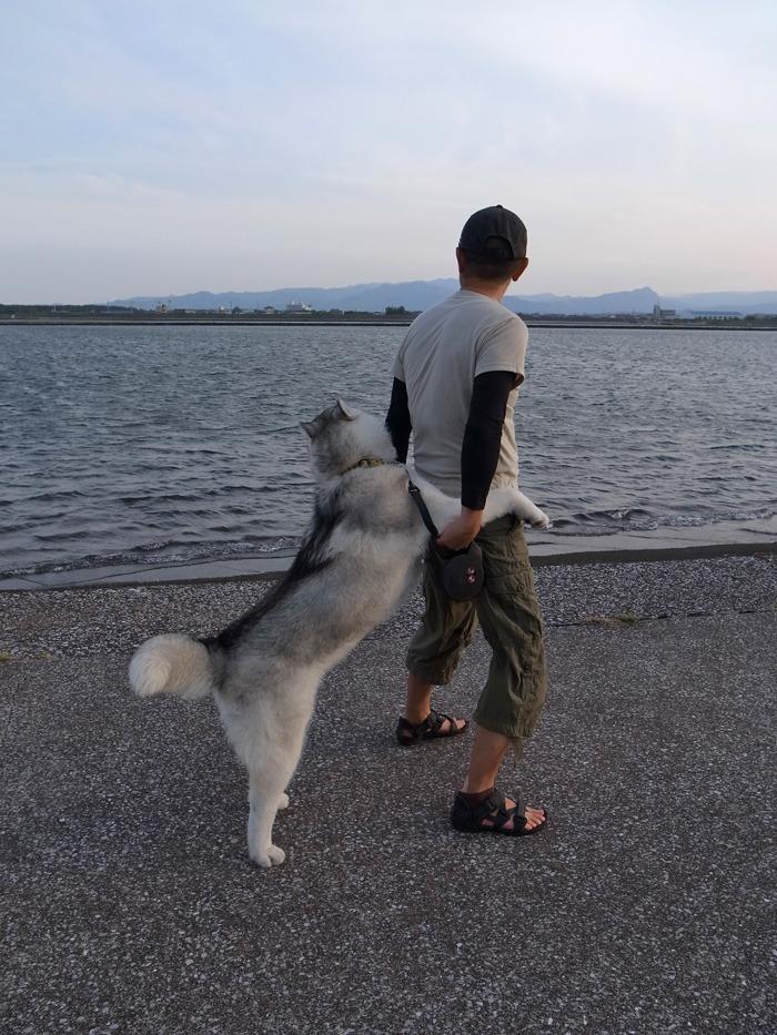 ニコ2歩散歩 (^o^)_c0049299_224742.jpg