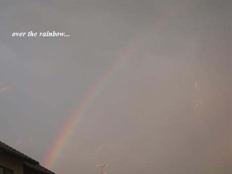 虹の橋・・・_c0098807_20231631.jpg