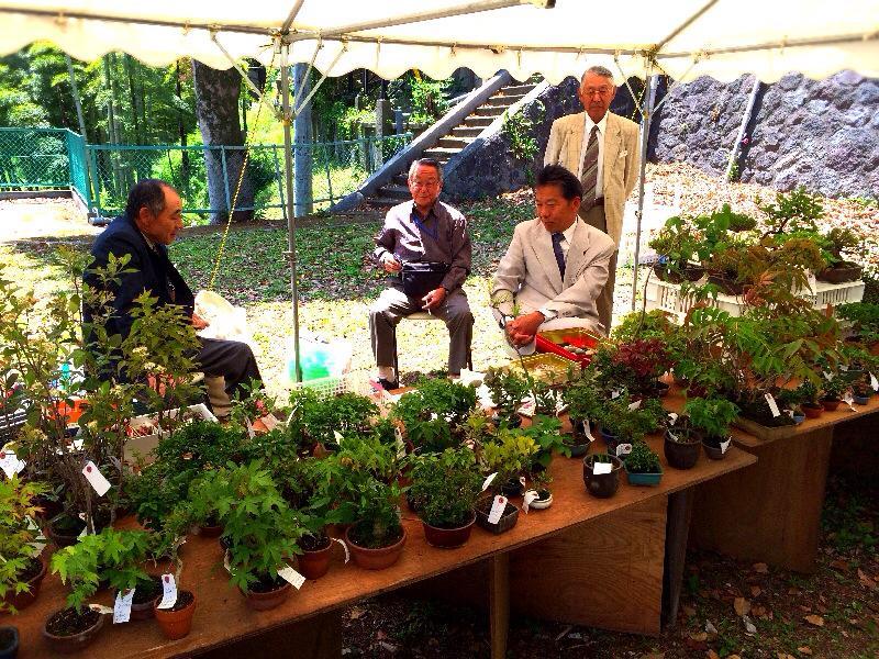 5/2(金)~4(日)湘南小品盆栽展 終了しました_c0110117_1451415.jpg