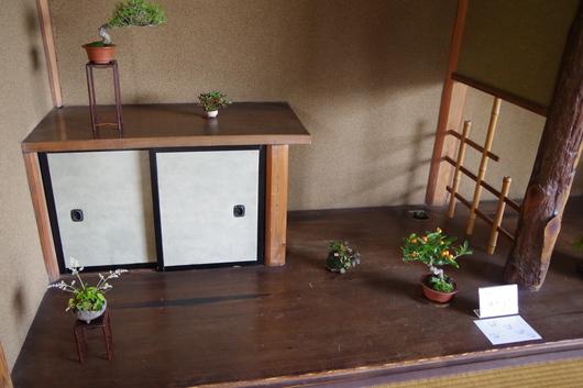 5/2(金)~4(日)湘南小品盆栽展 終了しました_c0110117_14571290.jpg