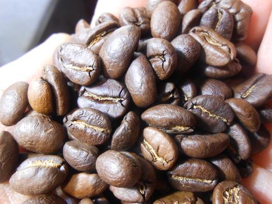 初摘み グァテマラ コーヒー豆_b0136223_11201157.jpg