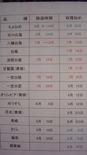 桃の収穫時期 一覧表_f0325525_00352073.jpg