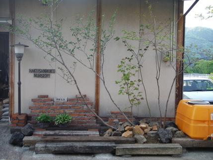 事務所の植栽_b0288732_188275.jpg