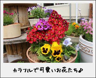 c0259934_16424776.jpg