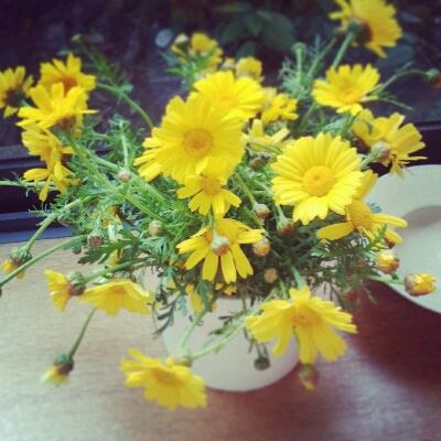春菊と。_e0330790_94256.jpg