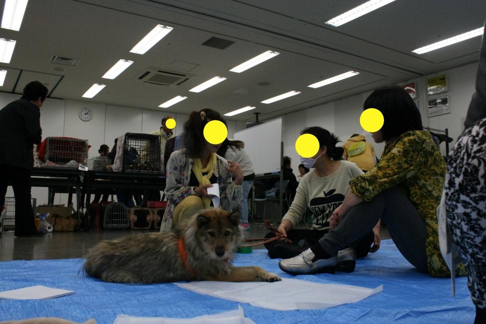 5/6 来夢里親会_f0242002_10414671.jpg