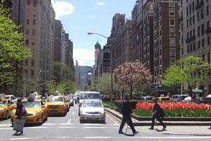 春のニューヨークのパーク・アベニュー_b0007805_1325615.jpg