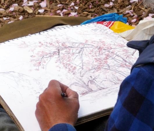 ただいま満開、セントラルパークの桜のトンネル_b0007805_20274526.jpg