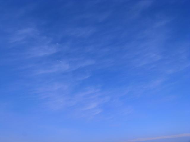みさき公園 海のみえる総合レジャーランド(わたしのお気に入り)_f0209122_10295654.jpg