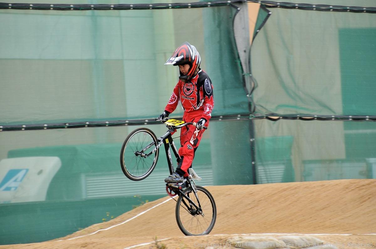 2014Jシリーズ /西日本シリーズ 第2戦 inサイクルピア岸和田(5/5) VOL10:予選その1_b0065730_11344975.jpg