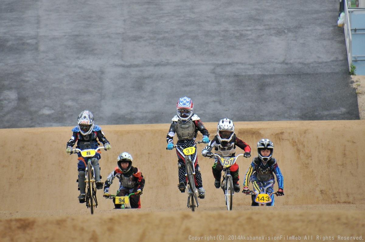 2014Jシリーズ /西日本シリーズ 第2戦 inサイクルピア岸和田(5/5) VOL10:予選その1_b0065730_11373482.jpg