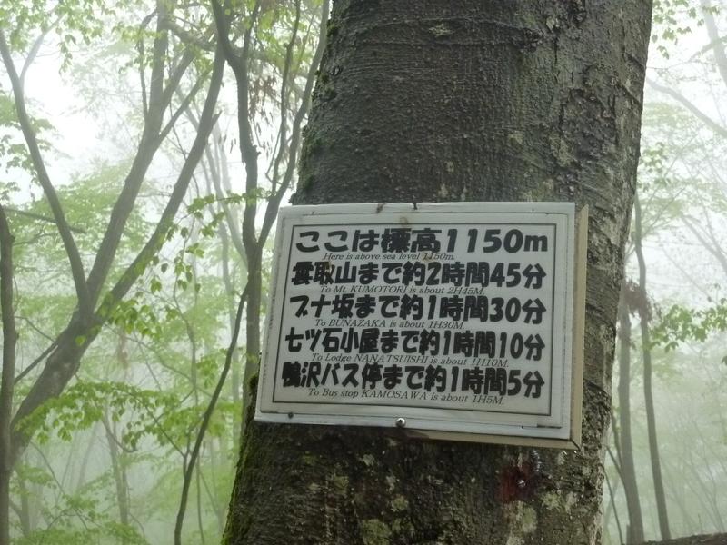 b0298935_11444443.jpg