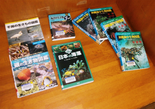 図書館取材_c0180460_1164156.jpg