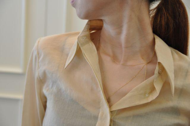 シャンパンゴールドのシャツ DRIES VAN NOTEN._b0110586_19533429.jpg