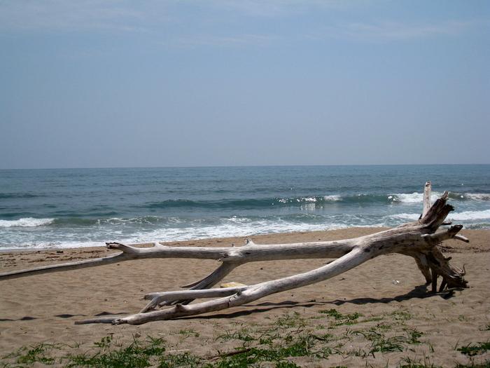 海〜!_e0303187_2116199.jpg