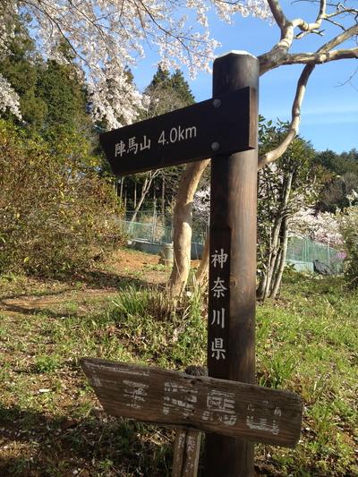 陣場から高尾山①_e0239908_22174892.jpg