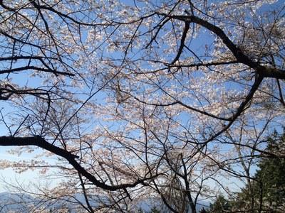 陣場から高尾山②_e0239908_2246682.jpg