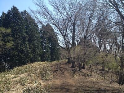 陣場から高尾山②_e0239908_2252422.jpg