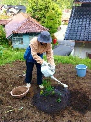 昨日の続き・・・農園は忙しい!_c0060919_3113475.jpg