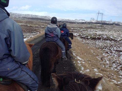 アイスランドの乗馬ツアーで人生初のパカパカを体験、楽しかったぁ!_c0003620_1522302.jpg