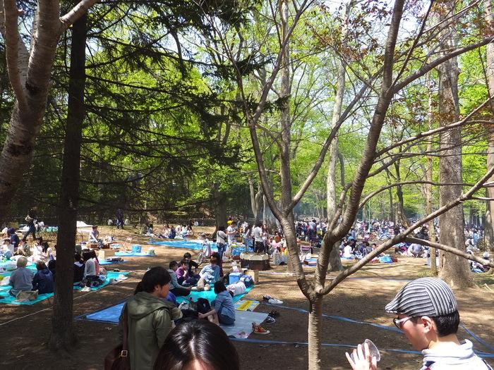 黒丸  お花見!!_c0226202_1951285.jpg