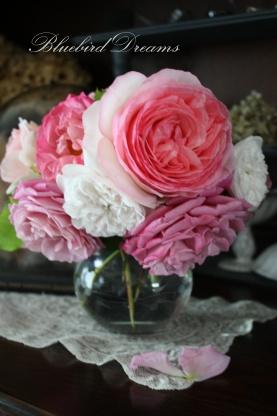 今年もきれいに咲きました♪_c0178104_1348088.jpg