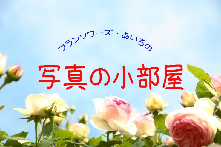 d0166115_10183299.jpg
