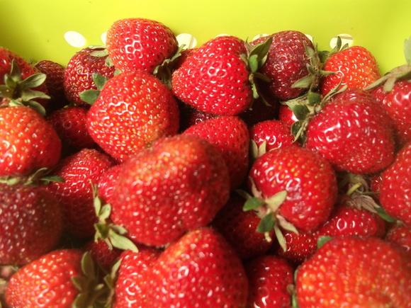 イチゴが届きました。_b0137932_16151964.jpg