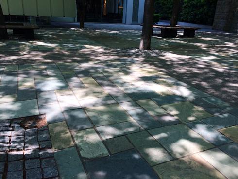 若き木漏れ日の正午_e0071652_1053680.jpg
