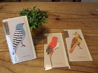 鳥のメッセージカードが新入荷しました。_d0237564_1714483.jpg