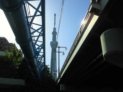 江戸川区から自転車で_c0249569_2113435.jpg