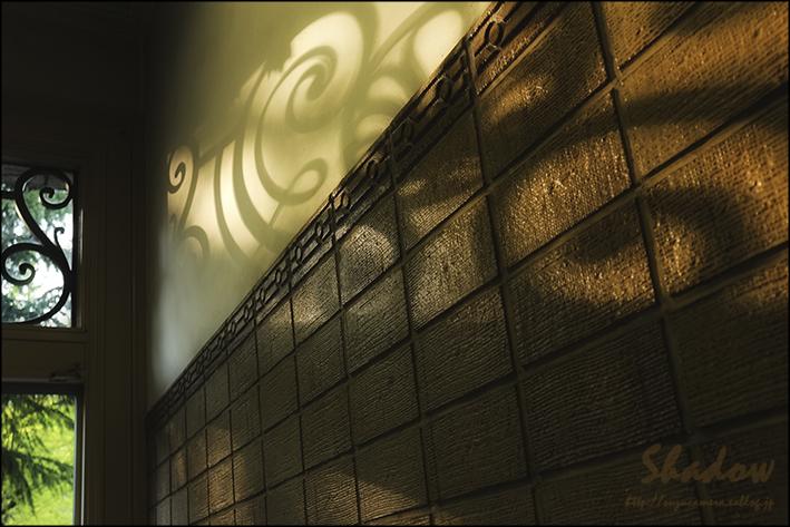 影にときめく_f0100215_23502135.jpg