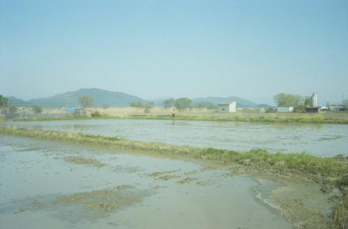 自然農を訪ねて 京都から滋賀へ_b0212922_10535399.jpg