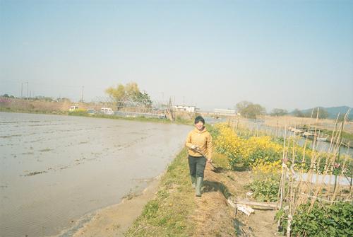 自然農を訪ねて 京都から滋賀へ_b0212922_10544490.jpg