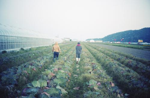 自然農を訪ねて 京都から滋賀へ_b0212922_1056391.jpg
