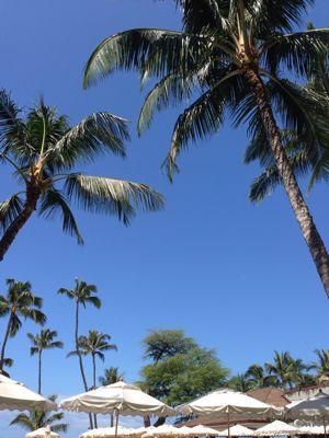 我がハワイ歴_f0215324_5501122.jpg