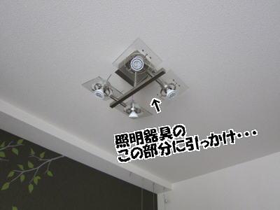 d0020869_12471873.jpg