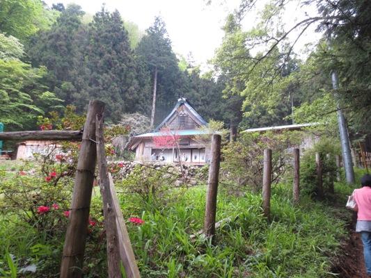 山中の蕎麦屋とヤマツツジ_c0310571_09145521.jpg