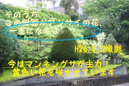 f0203094_15551012.jpg