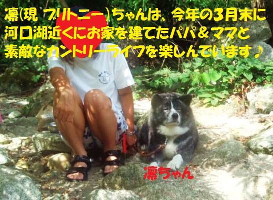 f0121712_7555616.jpg