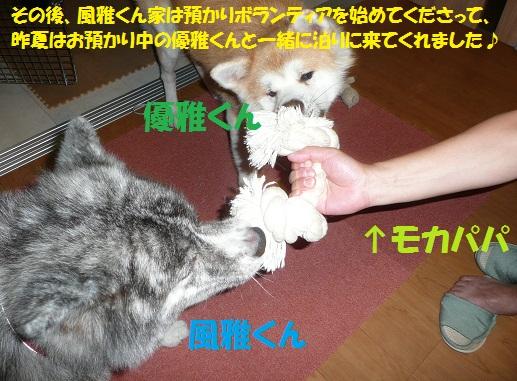 f0121712_7571839.jpg