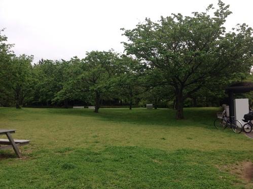 葛西臨海公園にて。その1_e0057018_21215133.jpg