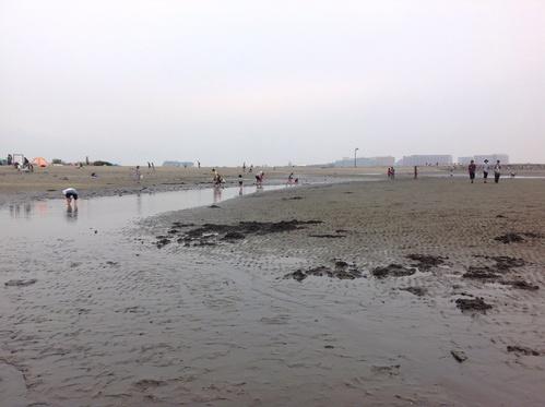 葛西臨海公園、その2。日本最大の観覧車。_e0057018_21454041.jpg