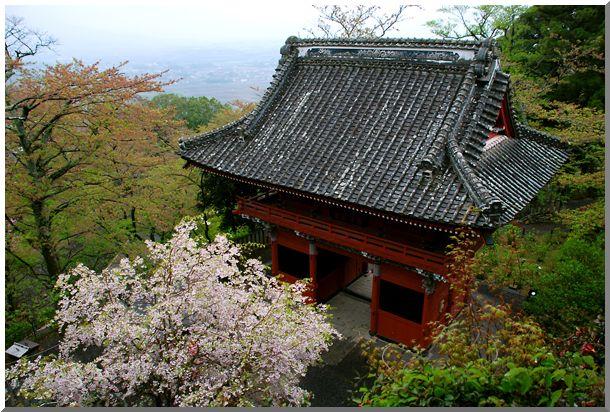 春のつくば路(茨城)_d0123528_16131816.jpg