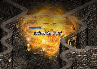 a0201367_934297.jpg