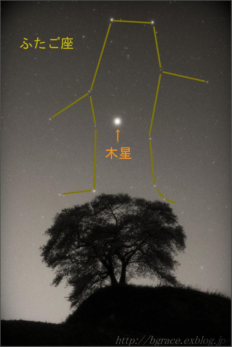 一本桜とふたご座_b0191074_13583822.jpg