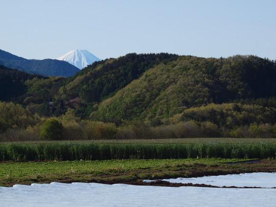 富士山_e0232277_10534712.jpg