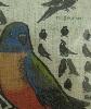 たまごの工房 企画展 「 トリ・とり・鳥 展 」 その2_e0134502_16511618.jpg
