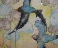 たまごの工房 企画展 「 トリ・とり・鳥 展 」 その2_e0134502_16555556.jpg